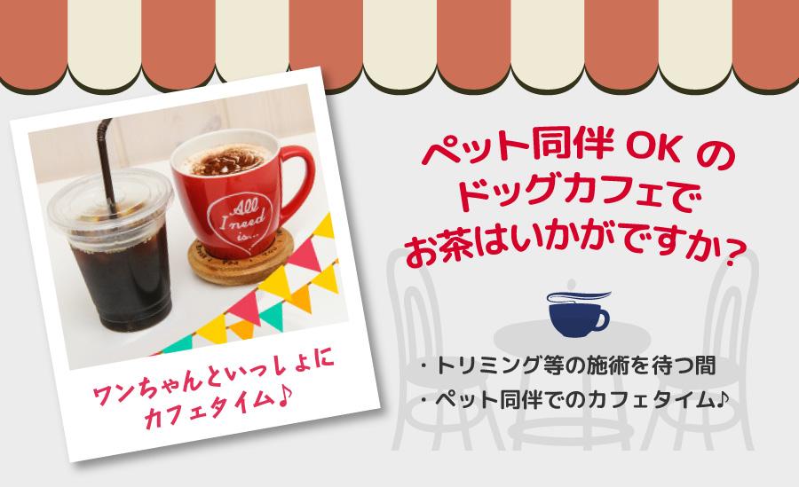 dogcafe_main